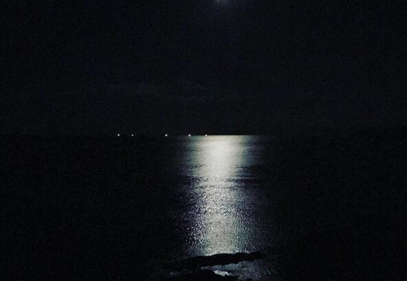 okadayumico.com伊勢の月画像